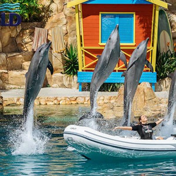 Adventure: Animal-Mania at Sea World