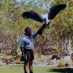 Adventure: Wildmania at Territory Wildlife Park